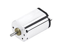 PTFF-031 Precious Metal Brushed Direct Current (DC) Micro Motors